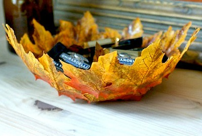 cinija od jesenjeg lisca