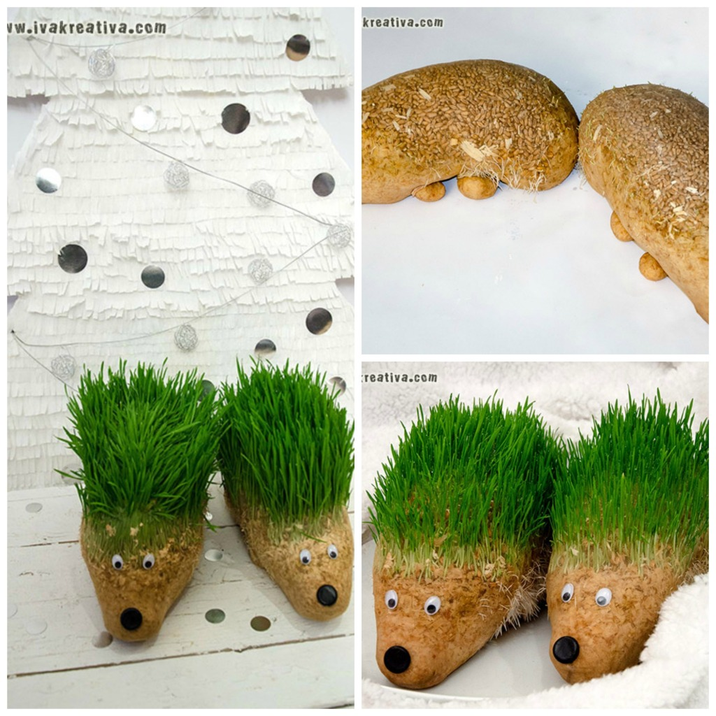 Kreativna božićna pšenica - jež.