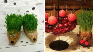 Kreativna božićna pšenica.