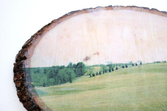 DIY transfer slike na drvo 6