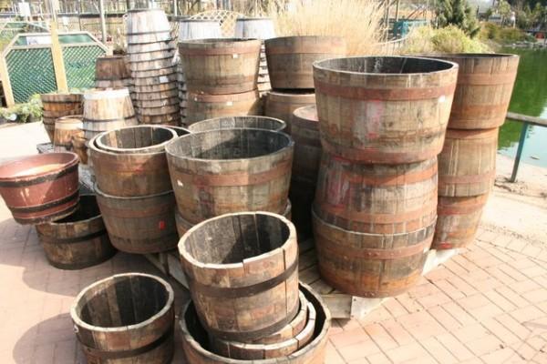sadnja krompira u buretu