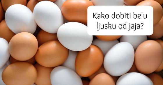 ljuske-od-jaja-fb